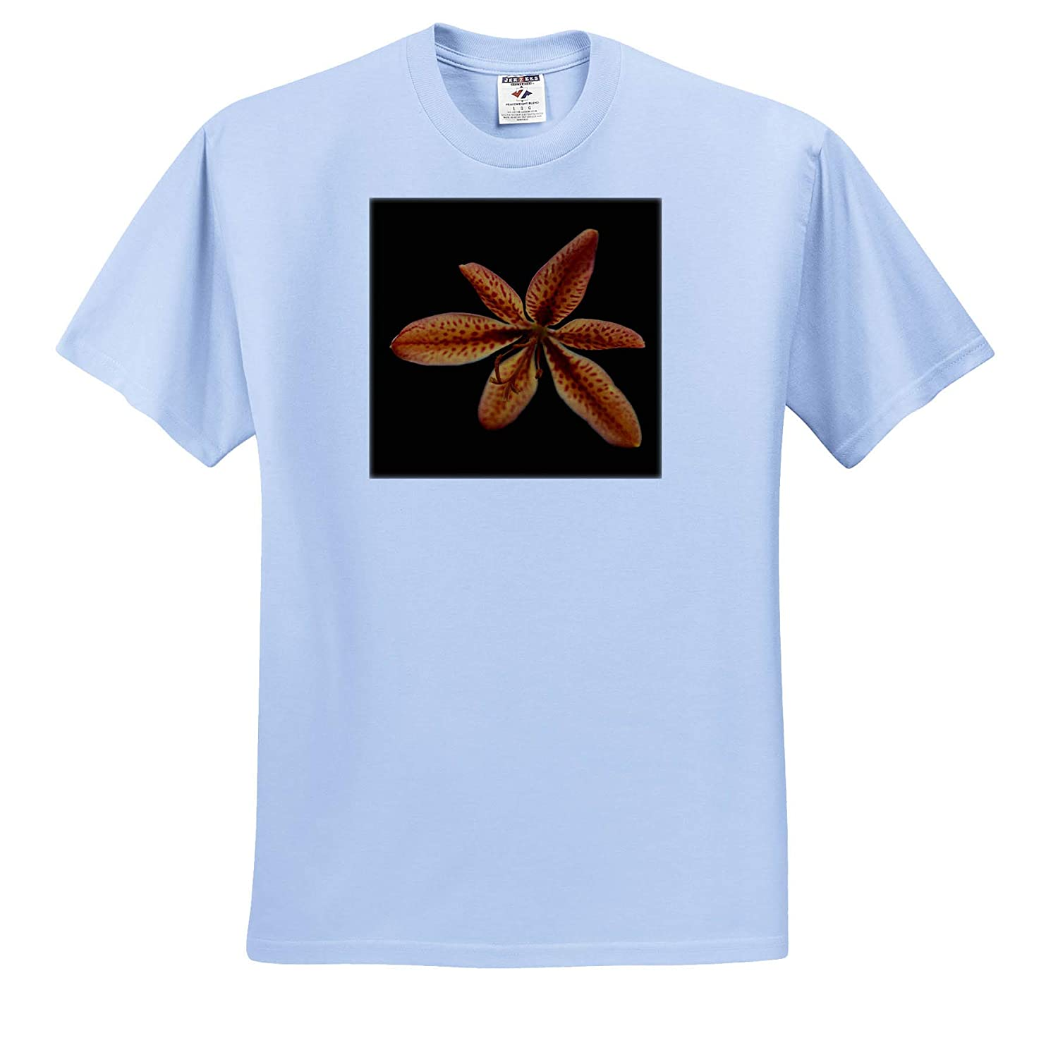 Macro Photograph of a BlackBerry Lily on a Black Background ts/_320123 - Adult T-Shirt XL 3dRose Stamp City Flowers