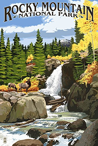 Rocky Mountain National Park, Colorado - Elk and Waterfall (36x54 Giclee Gallery Print, Wall Decor Travel Poster)