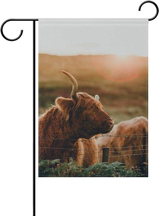 YATELI Doble Cara Encantadora Animal Vaca Vida Natural Puesta de Sol poliéster casa jardín Bandera Bandera 28x40 Pulgadas para Aniversario Familia jardín decoración: Amazon.es: Jardín