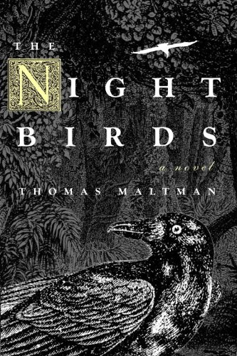 The Night Birds (Stores Mankato)
