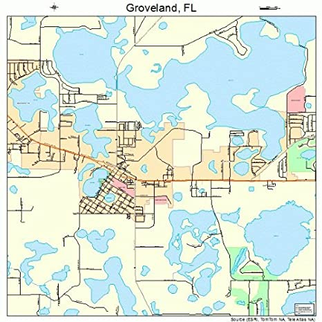Groveland Florida Map.Amazon Com Image Trader Large Street Road Map Of Groveland