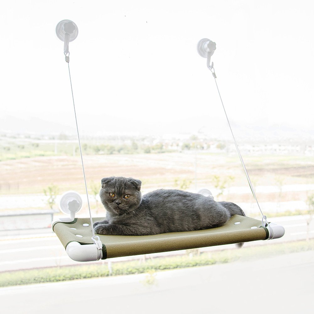 Furry Buddy Cat Window Perch 6 Strong Suction Cups Removable Cotton Canvas Co