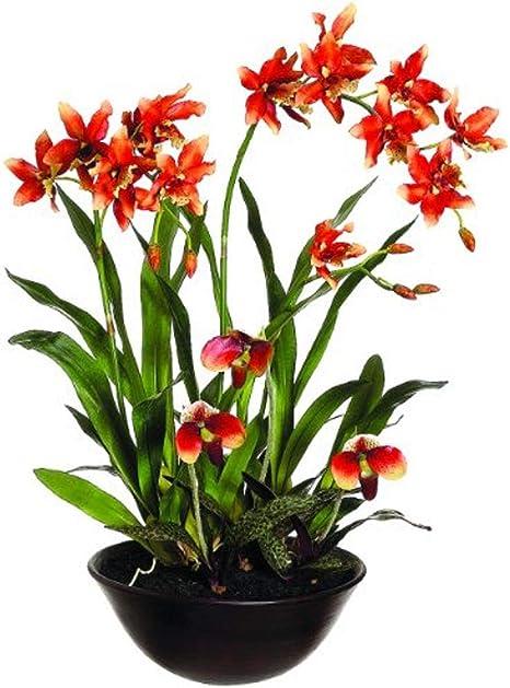 Silk Décor Oncidium Lady S Slipper Orchid Floral Arrangements 28 Inch Home Kitchen