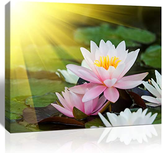 RED PINK FLOWER CANVAS WALL ART PICTURE 18 X 32 INCH FRAMED PRINT