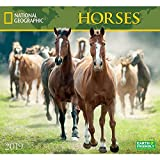 National Geographic Horses 2019 Wall Calendar