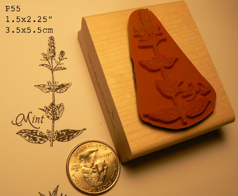 Rosemary herb rubber stamp WM p55d
