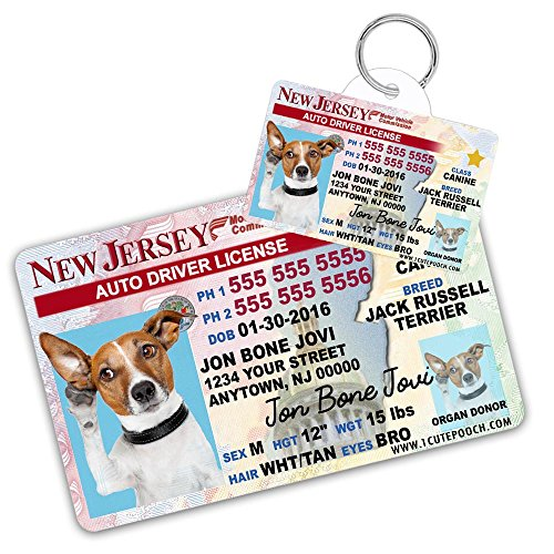 New Jersey Driver Licence Custom Dog Tags for Pets (2) and Wallet Card - Personalized Pet ID Tags - Dog Tags For Dogs - Dog ID Tag - Personalized Dog ID Tags - Cat ID Tags - Pet ID Tags For Cats