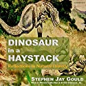 Dinosaur in a Haystack: Reflections in Natural History Audiobook by Stephen Jay Gould Narrated by Meredith MacRae, Efrem Zimbalist