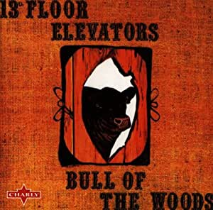 13th floor elevators bull of the woods music