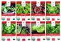 Sweet Yards Seed Co Lettuce Lovers' Organic Seed Variety Pack - 8 Unique Packets of Heirloom Non-GMO USDA Certified Organic Pure Seeds