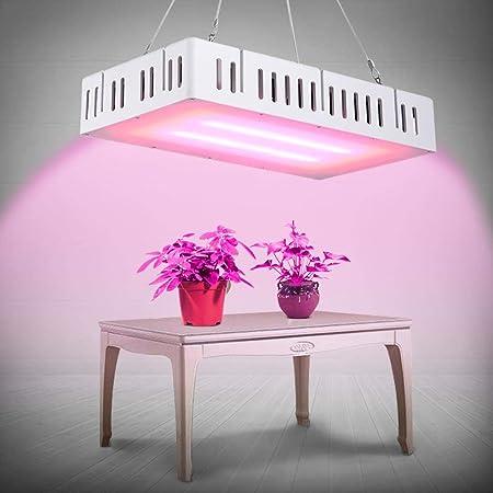 Lampe de Plante 300W Lampe de Croissance /équip/ée de 384 LEDs Full Spectrum LED Horticole pour Fruit L/égume Fleur Plante de Pot Eclairage de Greenhouse//Serre//Laboratoire//Jardin//Int/érieur