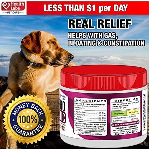best Dog Probiotic Powder Improve Gastrointestinal Health Natural