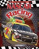 Nascar Racing (The Checkered Flag)