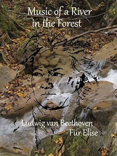 Music of a River in the Forest, Ludwig van Beethoven in Für Elise