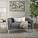 Christopher Knight Home 301296 Bridie Fabric Mid Century Modern Loveseat, Grey