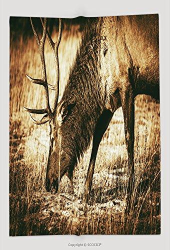 Custom Throw Blanket Adult North American Elk Closeup Colorado Wildlife Brown Vintage Color Grading 262869068 and Comfortable