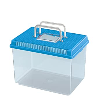 Feplast 60022099W1 Acuario para Peces Geo Large, Plástico Robusto, Asa para Un Fácil Transporte, 30 x 20 x 20.3 Cm - 6 L Azul: Amazon.es: Productos para ...