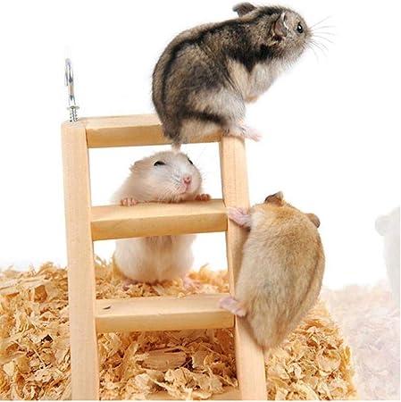 PiniceCore Las llegadas hámster Guinea Escaleras de Madera ratón hámster Escalera Cerdo Hurones Juguetes de Juguete para Mascotas Pequeño Escalera: Amazon.es: Hogar