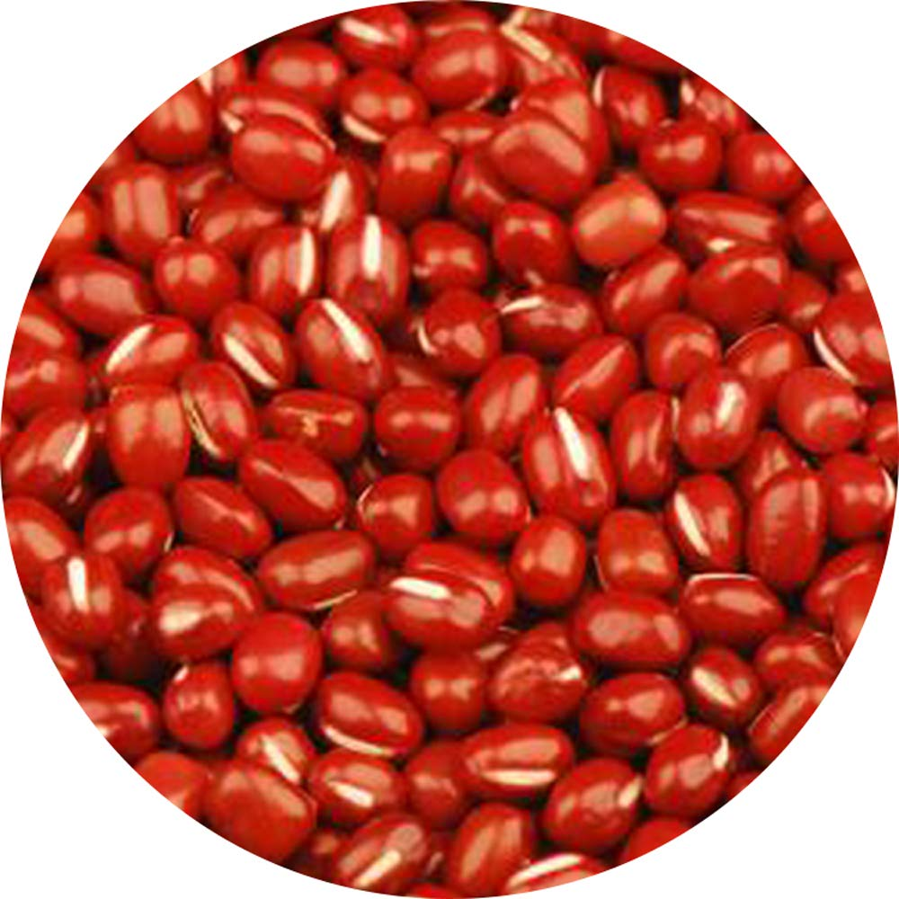 Glorious Inheriting Retailed Red Bean General Size with Net Bag of 17.64oz by GLORIOUS INHERITING