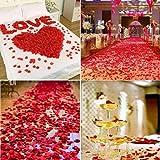 CODE FLORIST 2200 PCS Dark-Red Silk Rose Petals