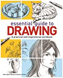img - for The Essential Guide to Drawing book / textbook / text book