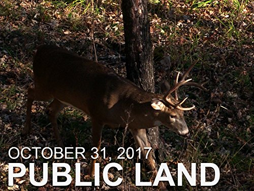October 31 - Public Land: Missouri Bucks in Bow -