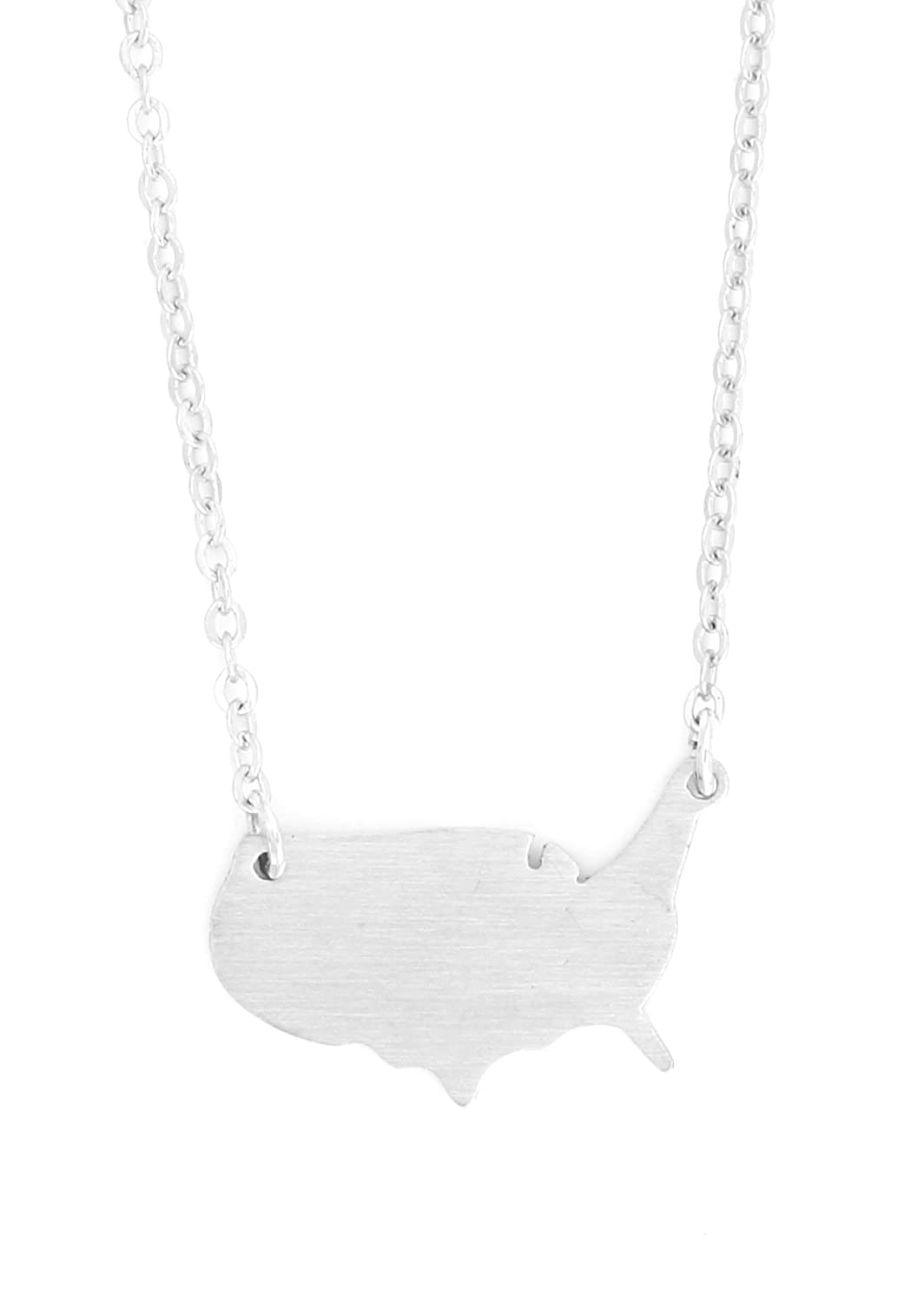 Amazon.com: Magic Metal United States of America Necklace ...