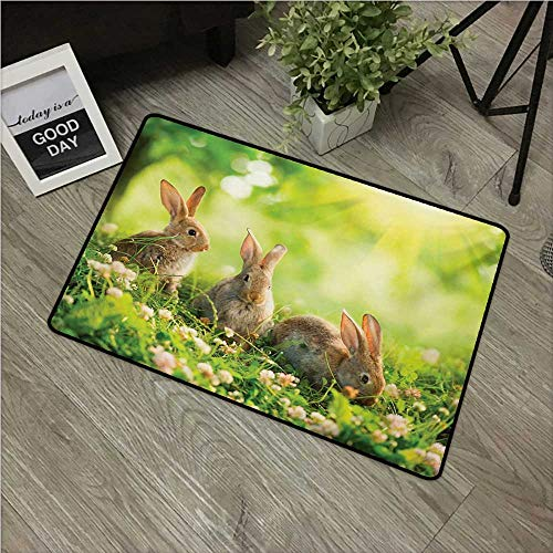 - HRoomDecor Animal,Outdoor Floor Mats Funny Fluffy Rabbits Bunny Family on Daisies Grass Easter Meadow Fresh Image W 24