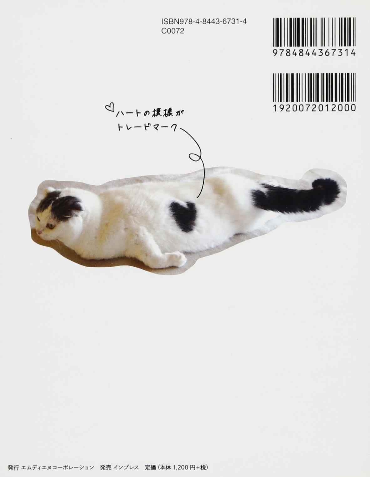 猫 科 ツムツム