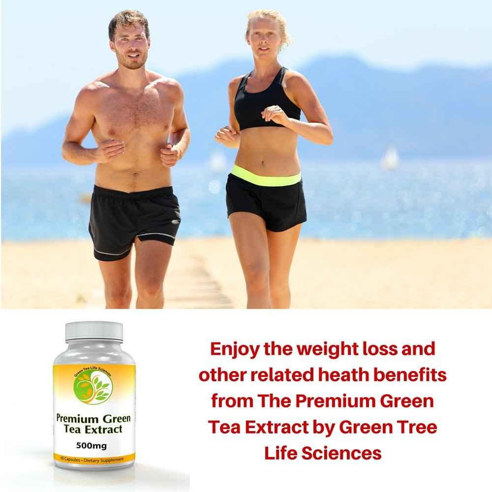 Amazon Com Premium Green Tea Extract Great Fat Burner For Weight