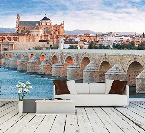 Roman Bridge and Guadalquivir River Great Mosque Cordoba Spain