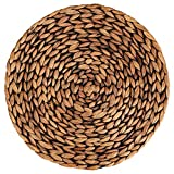 CENBOSS Beautiful Woven Placemats Round Placemats