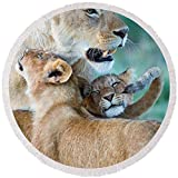 Pixels Round Beach Towel With Tassels featuring ''Close-up Of A Lioness And Her Two Cubs'' by Pixels