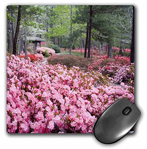 Price comparison product image 3dRose LLC 8 X 8 X 0.25 Inches Georgia, Pine Mountain. Garden Gazebo Julie Eggers Mouse Pad (mp_89330_1)