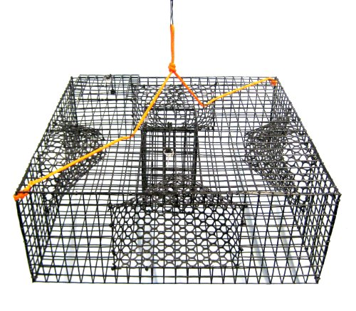 Shrimp Pot - Promar Heavy Duty Shrimp Pot with 1-Inch Mesh and 4 Tunnels, 24x24x9-Inch