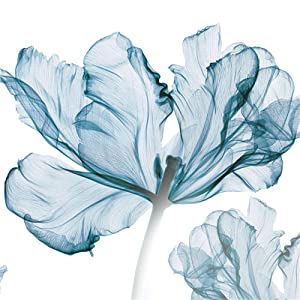 FANGLIAN Removable 3D BLUE Flower Wall Decals Romantic Floral Wall Sticker Murals Flowers Art Decor for Kids Girls Bedroom Nursery Rooms Wall Decoration for Home Living Room Offices Wall Corner Flower