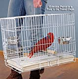 Collapsable Bird, Dog and Cat Carrier Travel Cage 19''x12''x16'' White