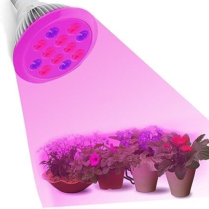 Bombillas Plantas UMsky 12W Luces LED Foco de Crecimiento Plant Light Luces Iluminacion para Plantas Interior