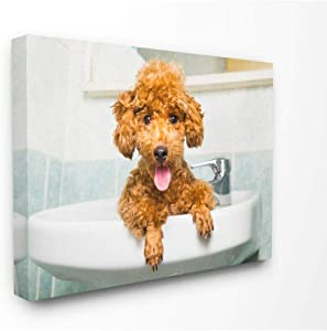 Stupell Home Décor Goldendoodle Puppy Sink Playtime Stretched Canvas Wall Art, 16 x 1.5 x 20, Proudly Made in USA