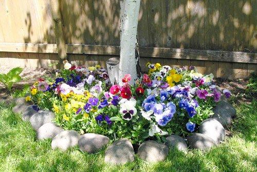 Instant Flower Garden - 6