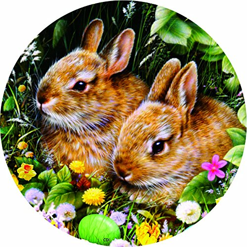 Accent Magnet-Spring Bunnies - Auto - Home - Kitchen -Yard -Six (6) Inch - Made in USA - Licensed , Copyrighted by Custom Decor Inc.