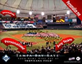 Tampa Bay Rays Team Stadium Print - Personlized Officially Licensed MLB Photo Print