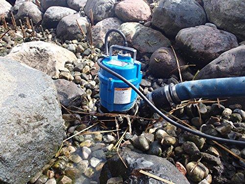 Tsurumi HS2.4S;  semi-vortex submersible trash pump w/agitator, 1/2hp, 115V,  , 2'' discharge by Tsurumi (Image #1)