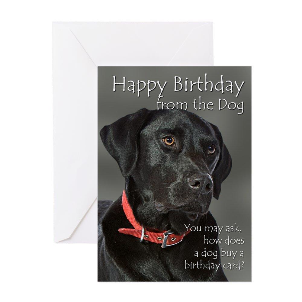 Amazon Cafepress From The Black Lab Birthday Card Greeting