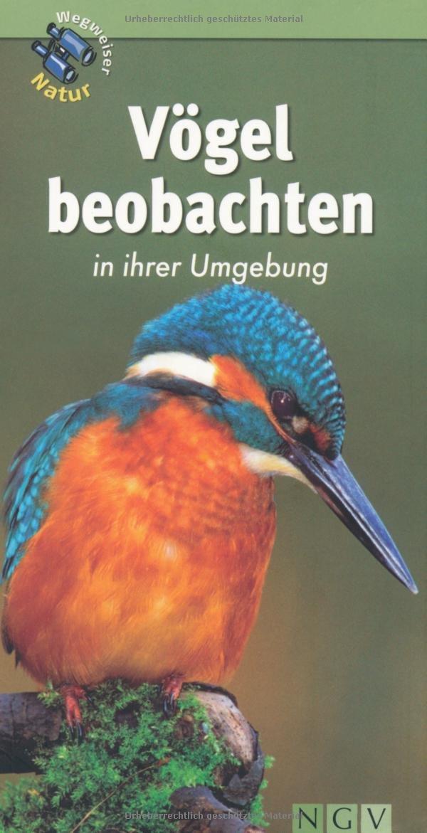 Vögel beobachten in ihrer Umgebung: Wegweiser Natur