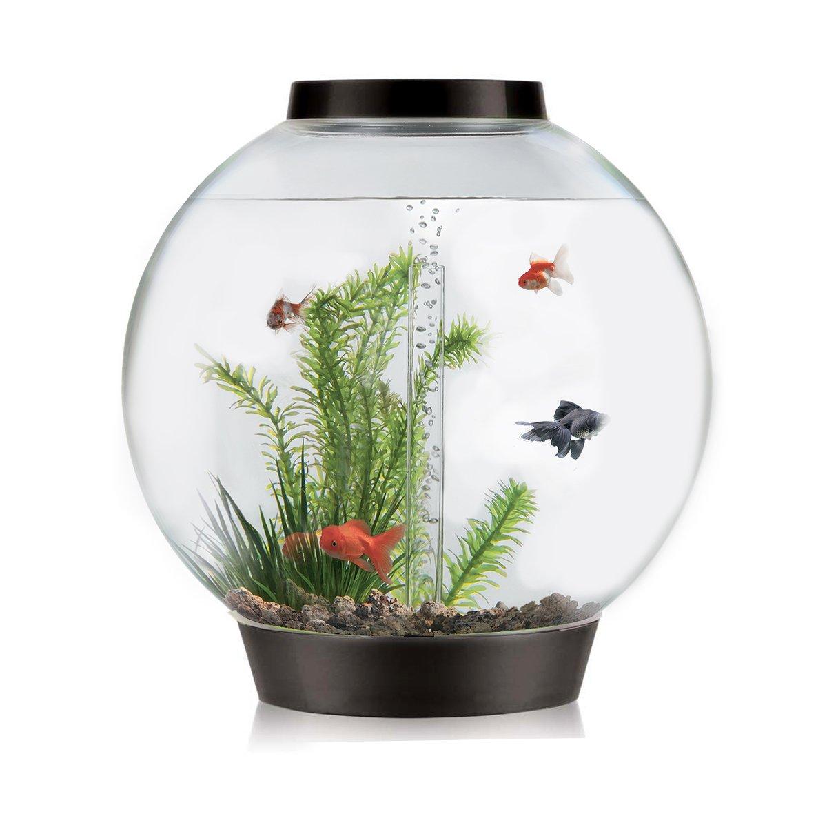 biOrb Classic Aquarium, 61 x 63 cm, 105 Liter, Silver, Intelligent ...