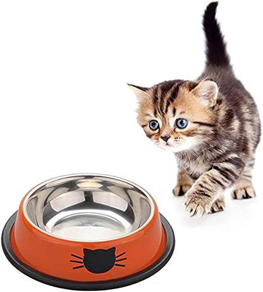 Moliies Tazón de Plato de Gato de Acero Inoxidable para Mascotas Tazón de Plato Grueso con Gatos Lindos Tazón de Gatito Antideslizante Pintado para Gatos pequeños + Naranja + Naranja: Amazon.es: Productos