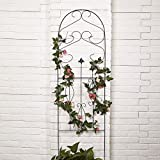"""Amagabeli 60"""" x 18"""" Rustproof Black Iron Garden Trellis for Climbing Plants Potted Vines Vegetables Vining Flowers Patio Metal Wire Lattices Grid Panels for Ivy Roses Cucumbers Clematis Pots Supports"""