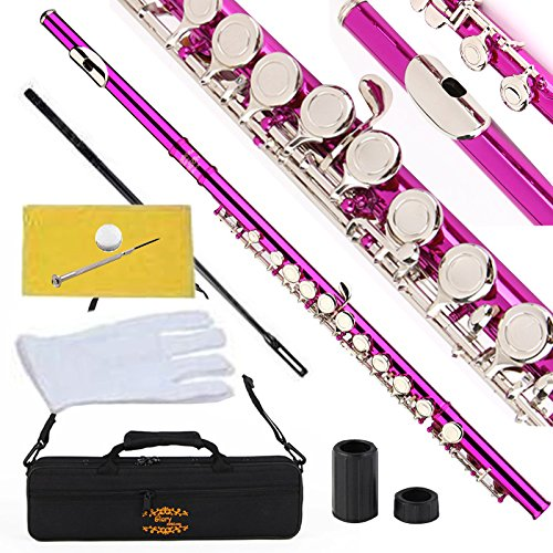 Glory Closed Hole C Flute With Case, Tuning Rod and Cloth,Joint Grease and Gloves-Pink Color by GLORY