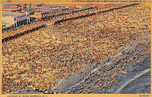 Coney Island, New York Postcard